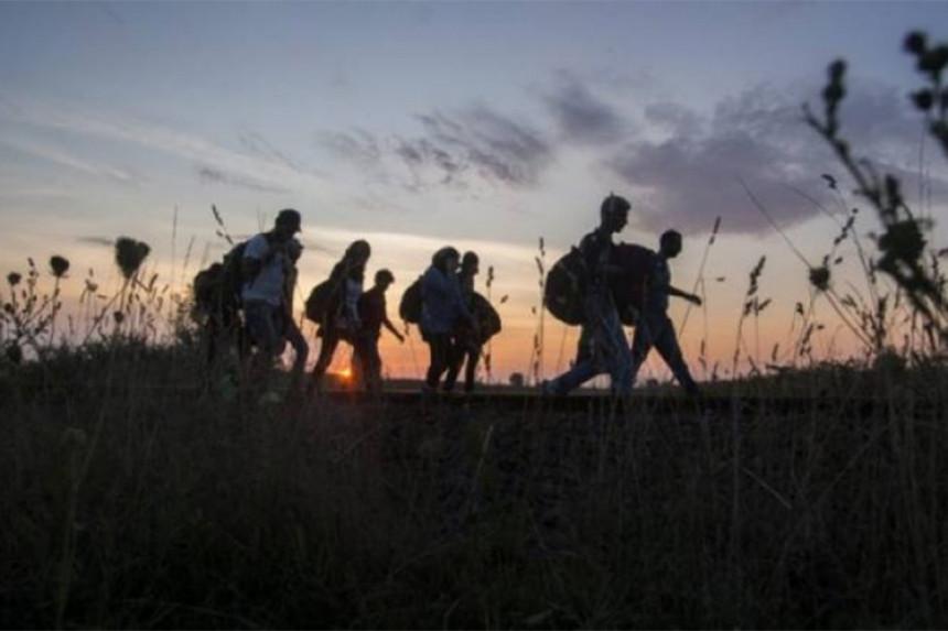 U Bijeljini novih 13 migranata