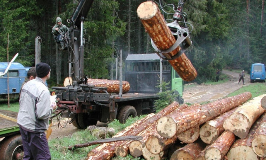 Ko izvozi šumu Republike Srpske?