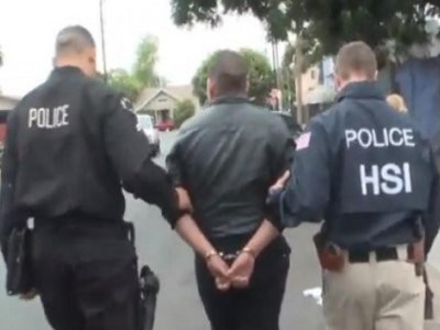 Велика акција хапшења педофила у Америци