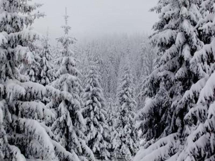 На Копаонику пао снијег