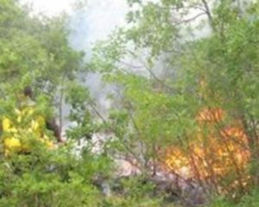 Izgorjela jedna kuća