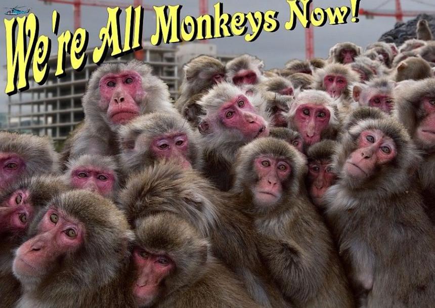 """""""Svi smo mi majmuni"""" hit!"""