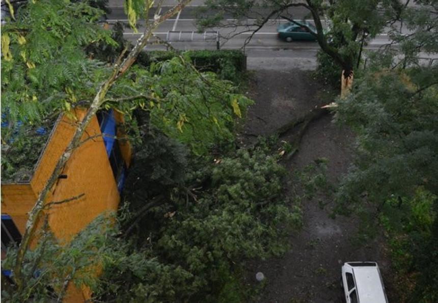 Nevrijeme u Brčkom lomilo drveće