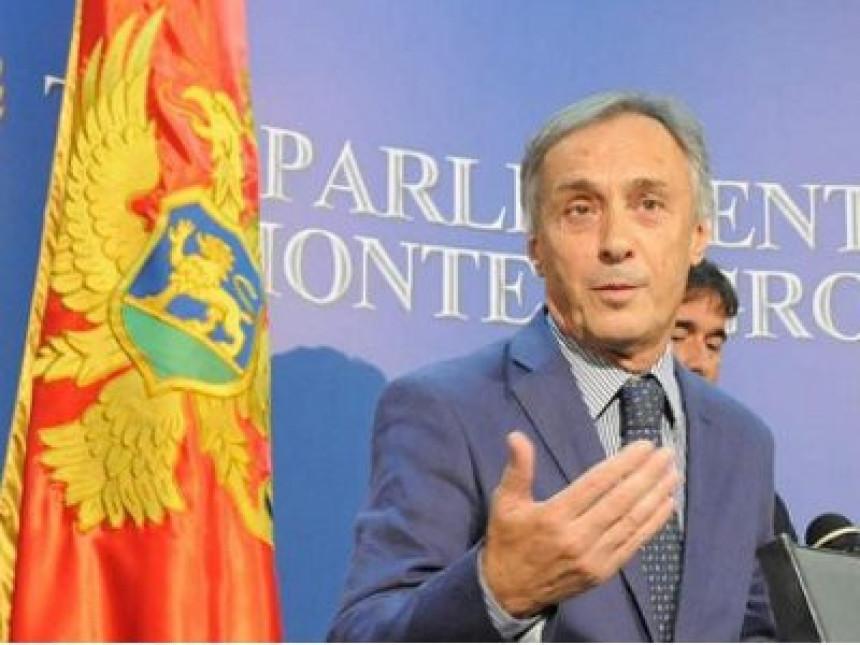 Lekić: Neću priznati Vujanovićevu pobjedu