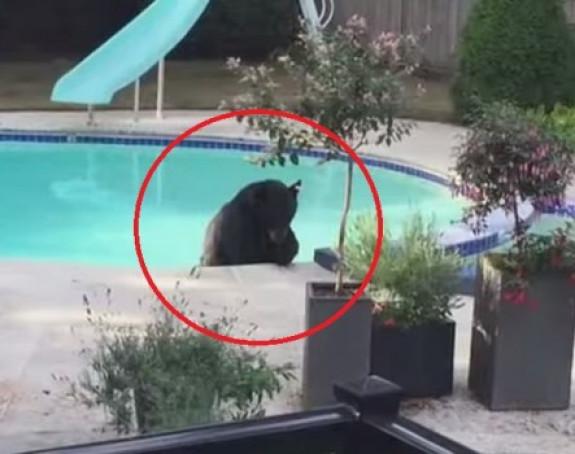 Vratili se s godišnjeg odmora, a u bazenu zatekli...
