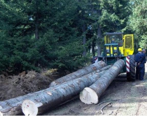 """Laketić: """"Šumama Srpske"""" treba radna i finansijska disciplina"""