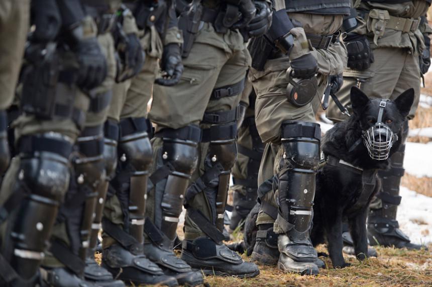 Vojni psi su noćas usmrtili oficira kod Beča