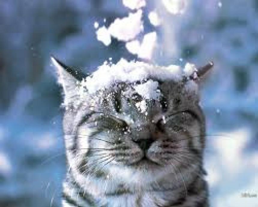 Ovo možda niste znali o snijegu