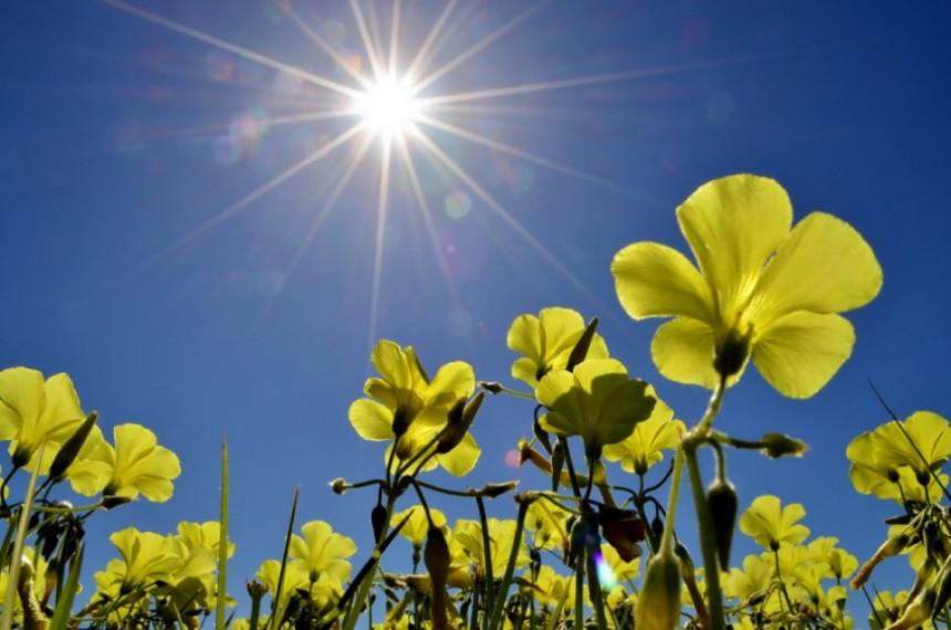 Danas pretežno sunčano vrijeme, temeperatura 22