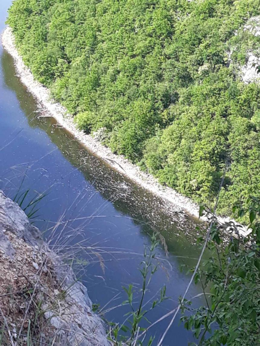 Novo zagađenje rijeke Vrbas kod Bočca (FOTO)