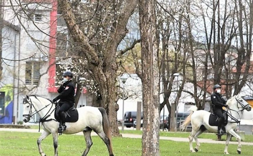 MUP RS adaptira trening centar za policijske konje, koji će koštati 186.000 KM