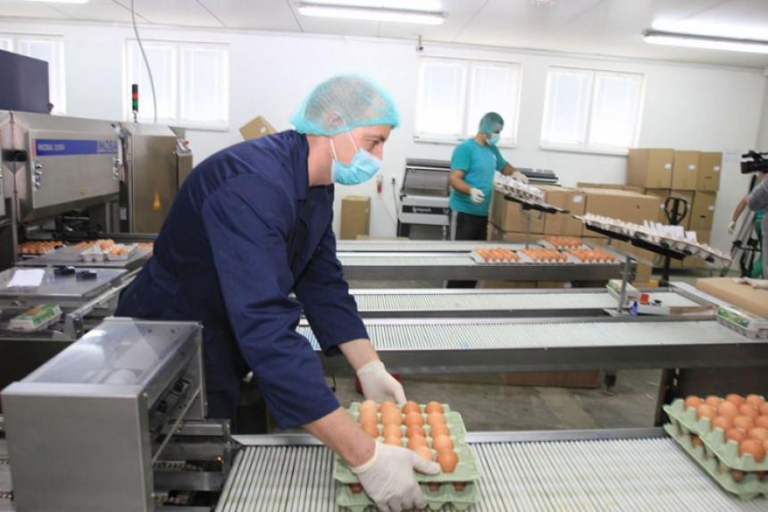 Živinari iz Srpske traže pomoć za doprinose radnicima