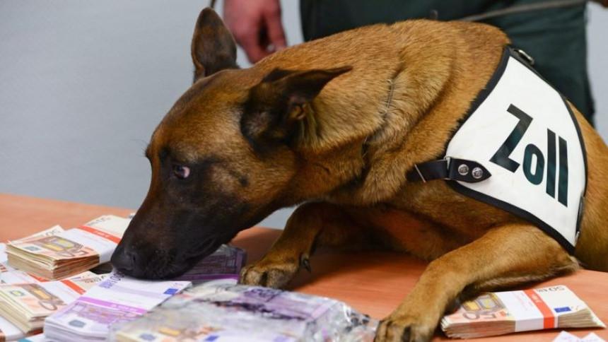 Пас трагач нањушио 250 хиљада евра на аеродрому