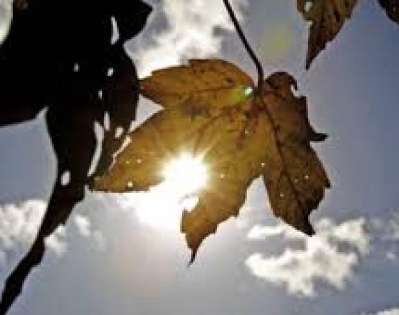 Najviša dnevna temperatura biće od jedan do šest