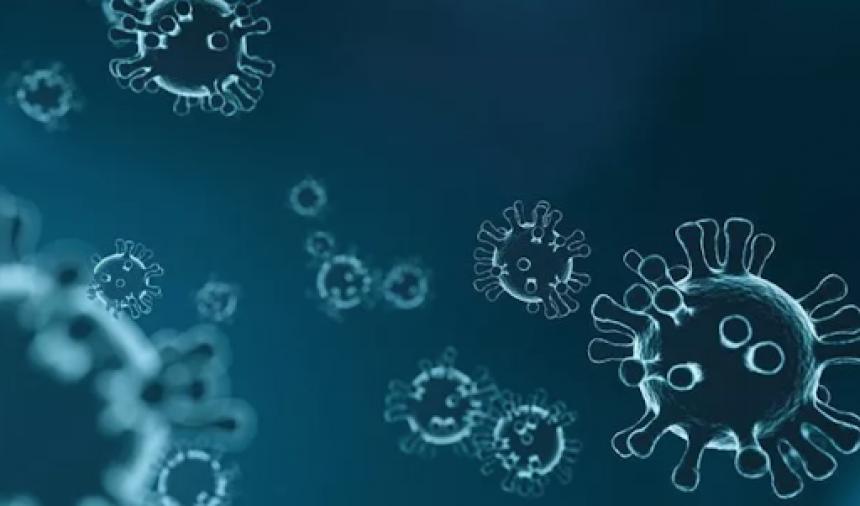 Republika Srpska: 85 novih slučajeva virusa korona