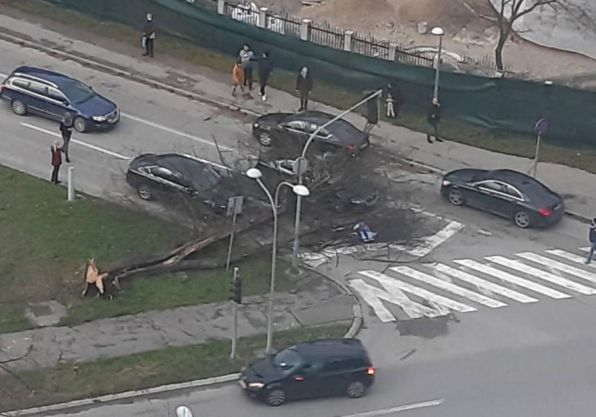 Vjetar pravi haos u Banjaluci, palo drvo na auto