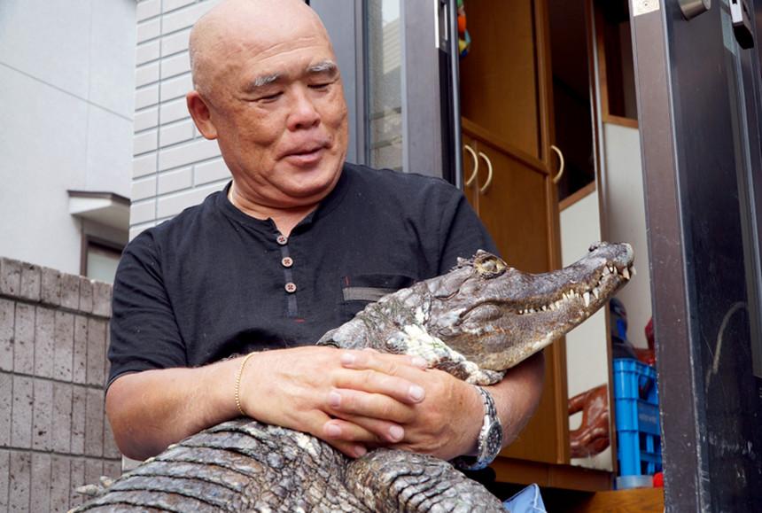 NEVEROVATNO: Japanska porodica živi 40 godina sa krokodilom u kući!