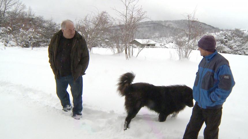 Kolaps zbog snijega, 200 domaćinstava bez struje