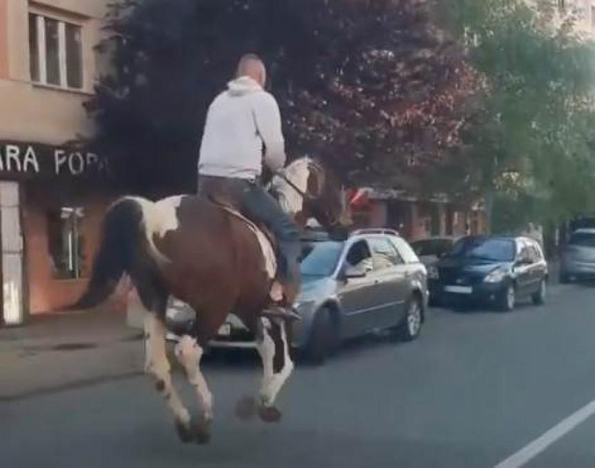 БЕОГРАД: На коњу тркнуо до маркета и узео намирнице