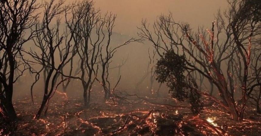 Federacija BiH šalje pomoć Turskoj za gašenje požara