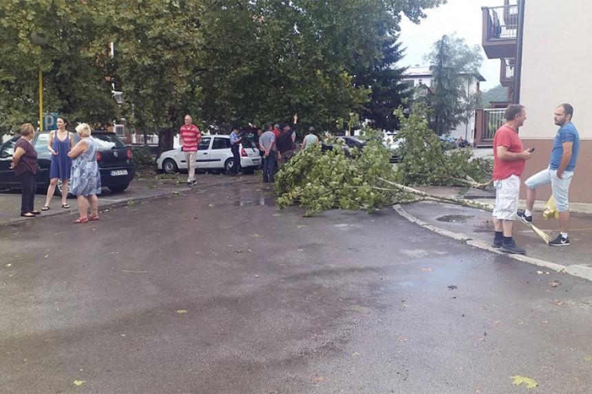 Jako nevrijeme u Milićima: Vjetar i kiša rušili stabla