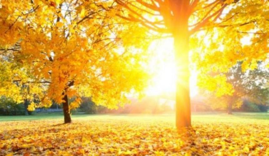 Miholjsko ljeto biće toplije od prosjeka?