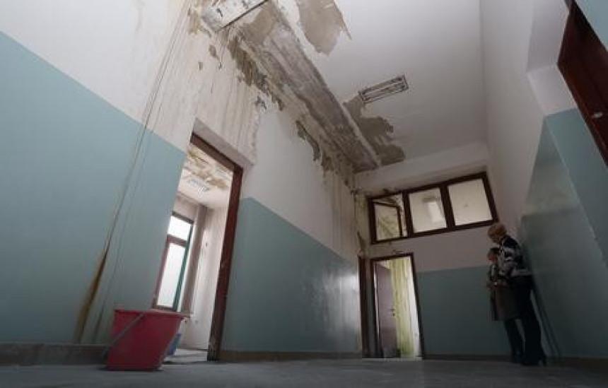 Школа: Печурке и маховина по зидовима