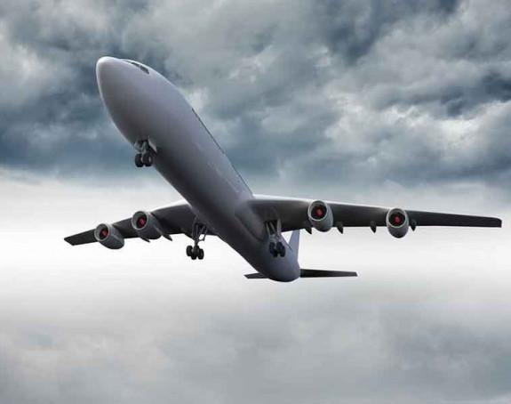 Avion sletio nakon udara ptice
