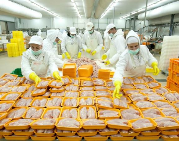 Uskoro izvoz piletine u EU