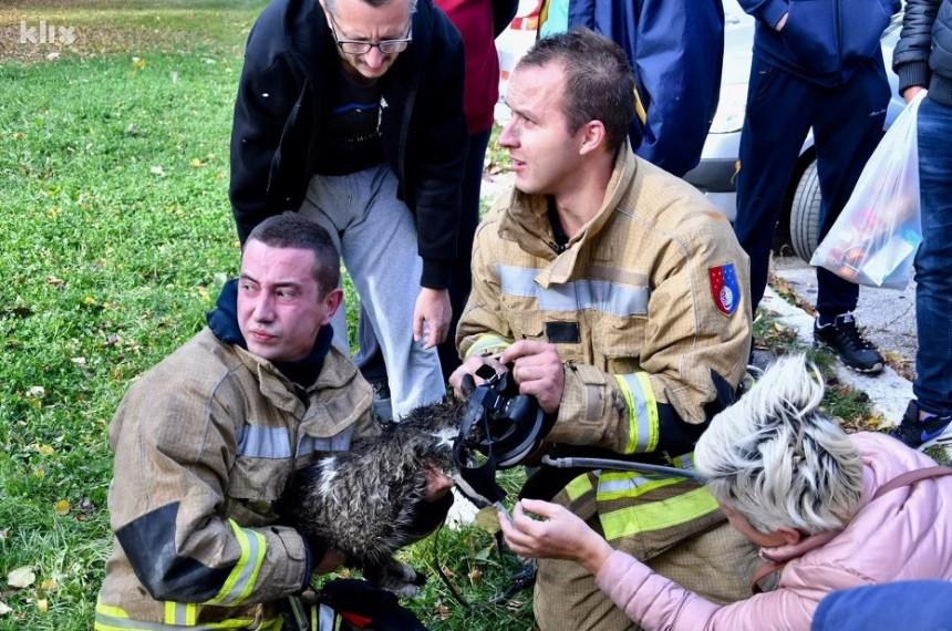 Храбри ватрогасци оживјели и мачку